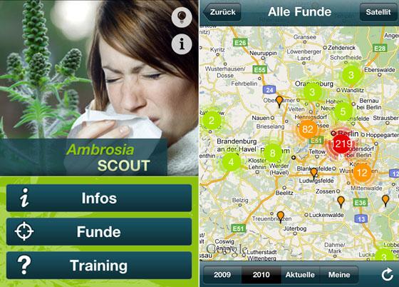 Ambrosia Scout