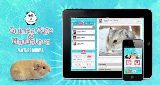 Nature Mobile: Ginny Pigs and Hamsters
